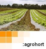 AgroHort